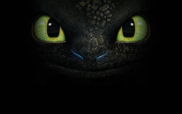 Awesome Eyes Of A Predator Full Hd Wallpaper