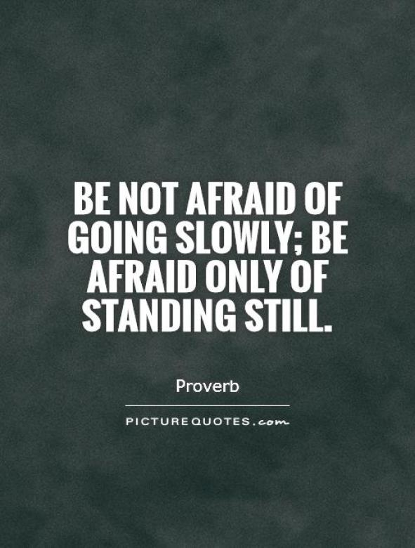 Be not afraid of going slowly be afraid only of standing
