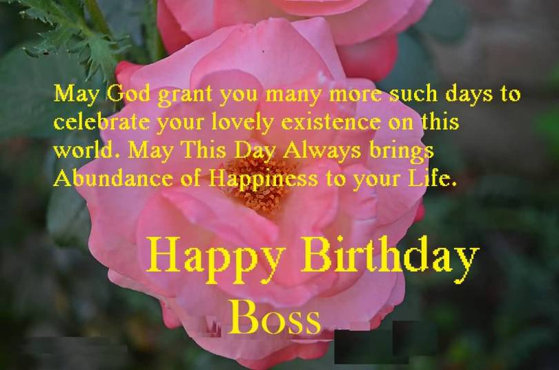 Birthday Saying For Nice Boss