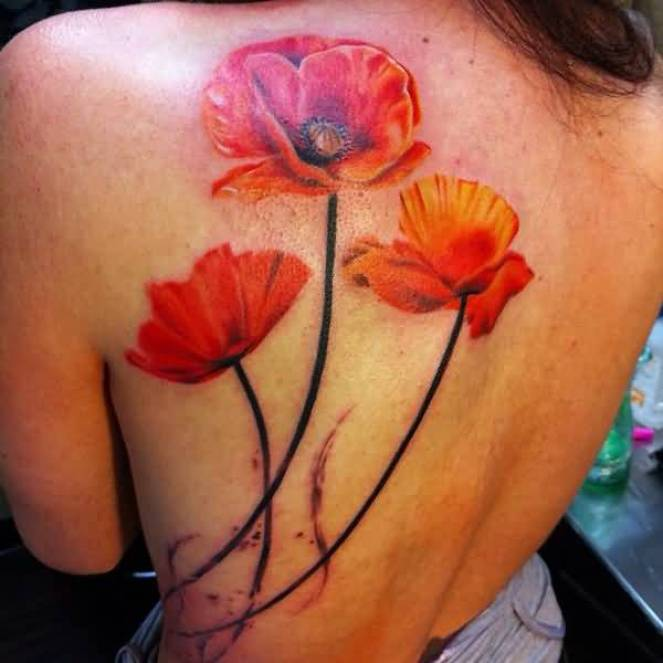 CUTE Poppies tattoo ON BACK With colourful ink For Man And Woman