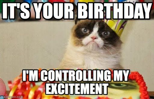 Cat Funny Happy Birthday Wishes Meme