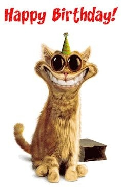 Cat Funny Smiling Happy Birthday Wishes