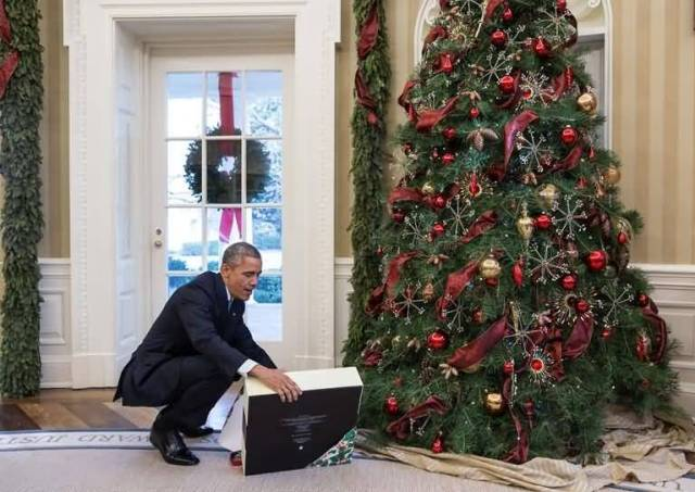 Christmas Tree Inside The White House With Obama Photo