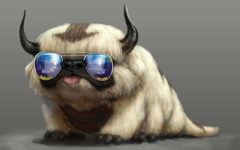 Cute Animal Wearing Modern Sunglasses Full Hd Wallpaper