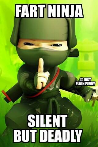 Fart Ninja Silent But Deadly Funny Ninja Memes Graphic