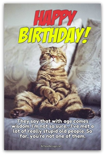 Funny Cat Happy Birthday Say Wishes Card