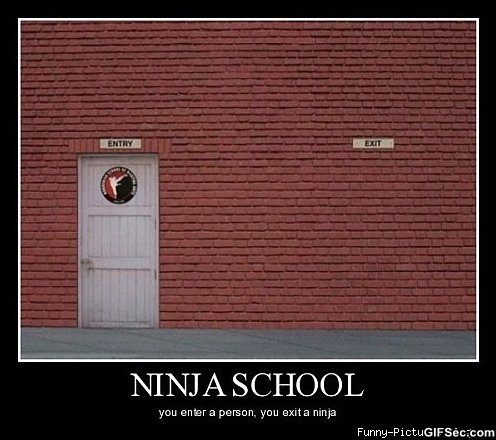 Ninja School YOU Enter A Person, You Exit A Ninja funny picture