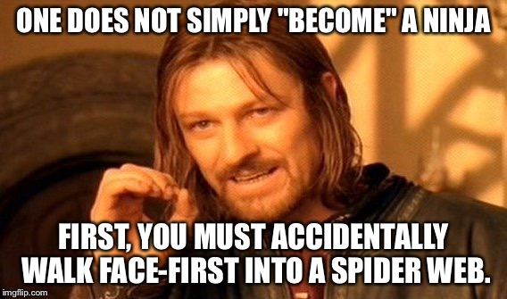 Funny Ninja Memes One Does Not Simply Become A Ninja First You Must Image
