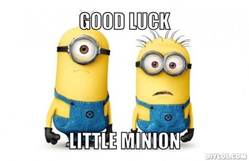 Good Luck Little Minion Wishes Image