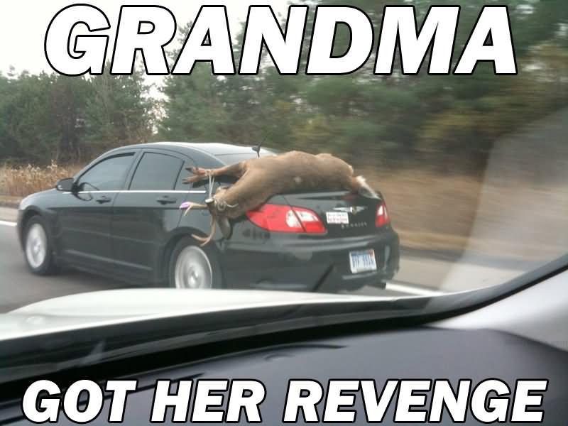 Grandma Got Her Revenge Funny Ninja Memes