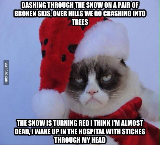 Grumpy Cat Meme Dashing Through The Snow On A Pair Of Broken Skis Over Hills We Go Crashing Into Trees