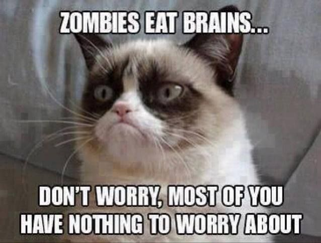 Grumpy Cat Meme Zombies Eat Brains Dont Worry Most Of You Have Nothing To Worry About