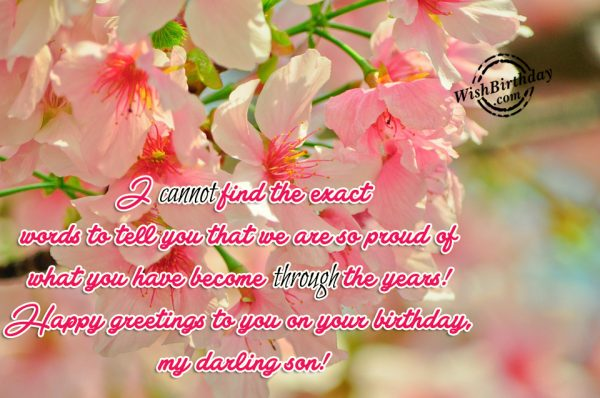 Happy Greeting To You On Your Birthday Dear Son