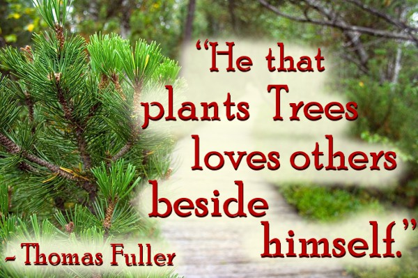He that plants tress loves others beside Thomas Fuller