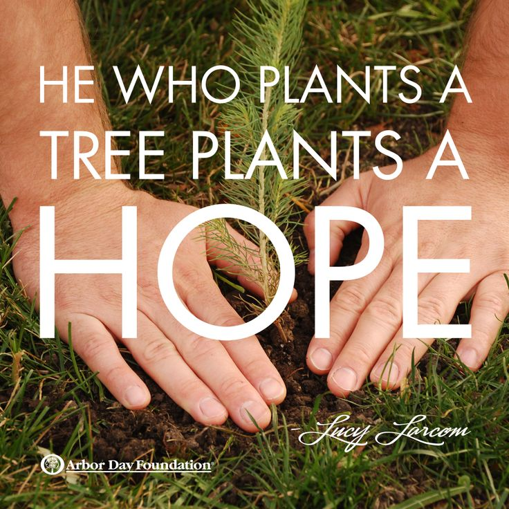 He who plants a tree plants a Lucy Larcom