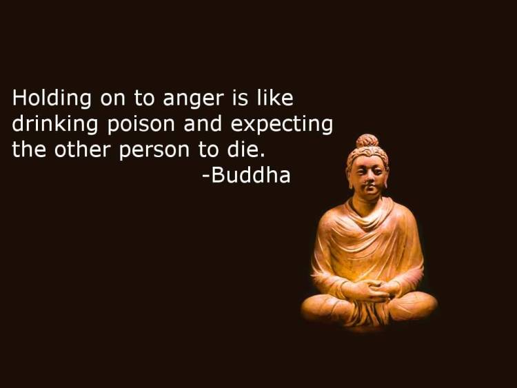 Holding On To Anger Is Like Drinking Poison And Expecting The Other Person To Diebuddha