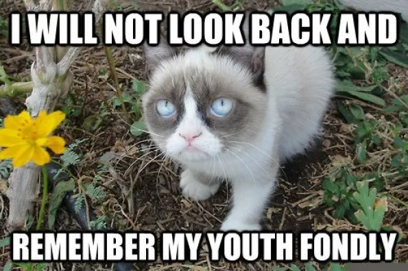 I Will Not Look Back And Remember My Youth Fondly Grumpy Cat Memes Photo