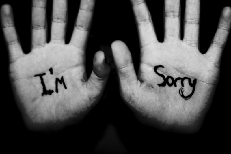 I'm Sorry Wallpaper