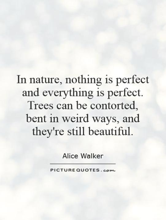 In nature nothing is perfect and everything is perfect. Trees can be contorted bent in weird ways and theyre still Alice Walker