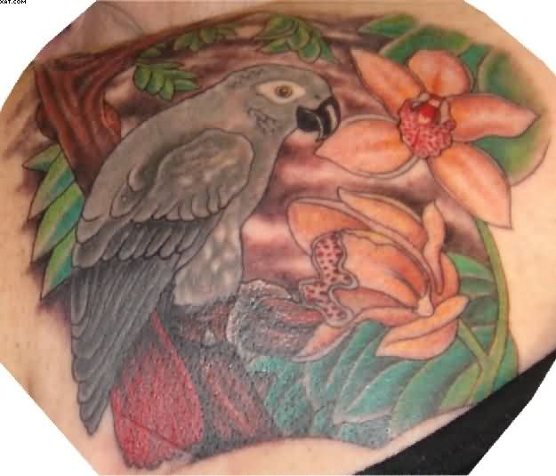 Perfect Red Green And Grey Color Ink African Grey Parrot With Orchards Tattoo On Boy Back