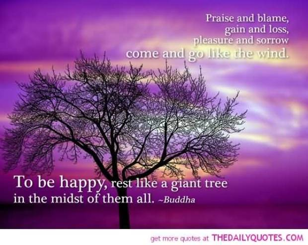 Praise and blame gain and loss pleasure and sorrow come and go like the wind. To be happy rest like a giant tree in the midst of them Buddha