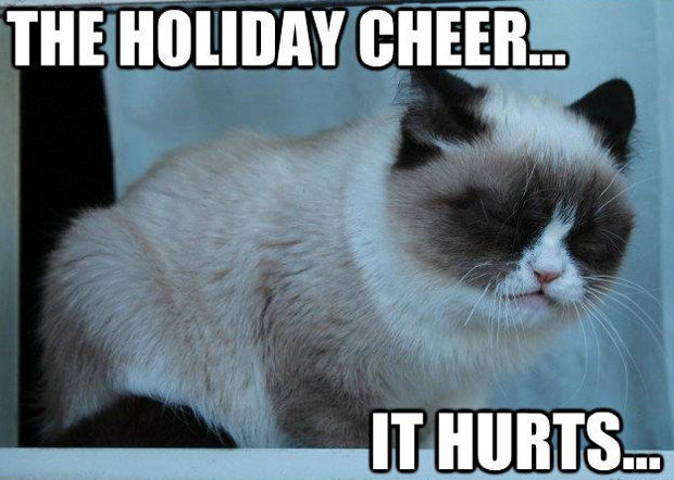 The Holiday Cheer It Hurts Grumpy Cat Meme