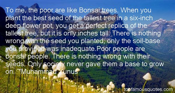 To me the poor are like Bonsai trees. When you plant the best seed of the tallest tree in a six inch deep flower pot you get a Muhammad Yunus