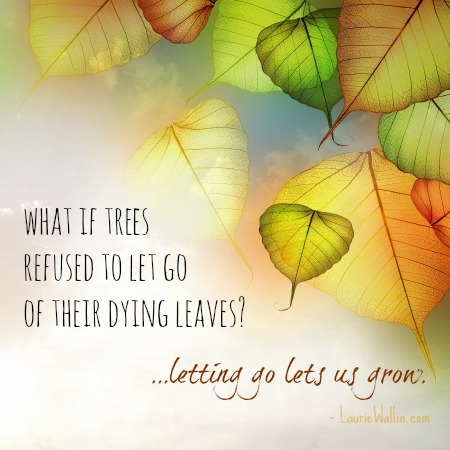 What if trees refused to let go of their dying leaves1letting go lets us