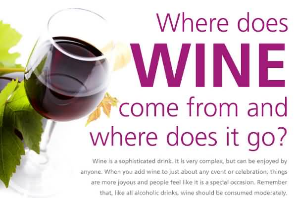 Where does wine come from and where does it go.
