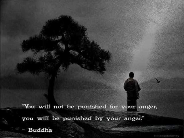 You Will Not Be Punished For Your Anger You Will Be Punished By Your Anger Buddha