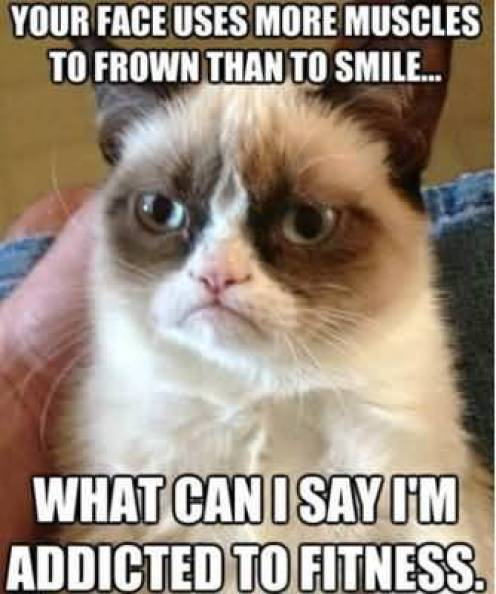Your Face Uses More Muscles To Frown Than To Smile What Can I Say Im Addicted To Fitness Grumpy Cat Memes Image