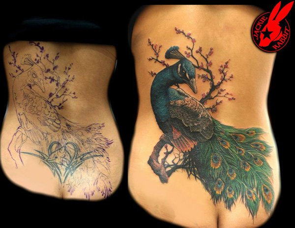 Attractive Peacock Cover Up Tattoo By Jackie Rabbit On Back With Colourful Ink For Man And Woman
