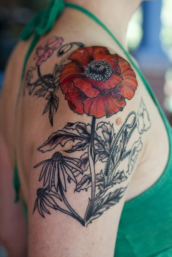 dashing poppy tattoo on shoulder With colourful ink For Man And Woman