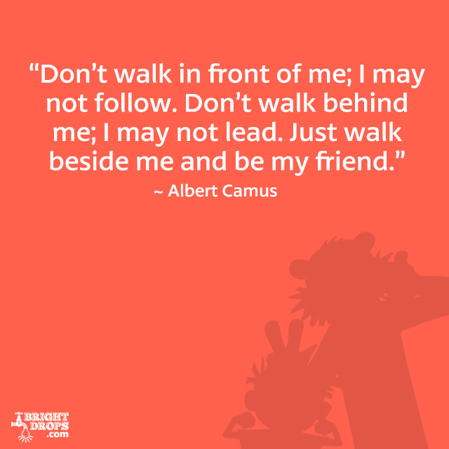 don't walk in front of me. i may not follow. don't walk behind me i may not lead just walk beside me and be my friend (albert camus)