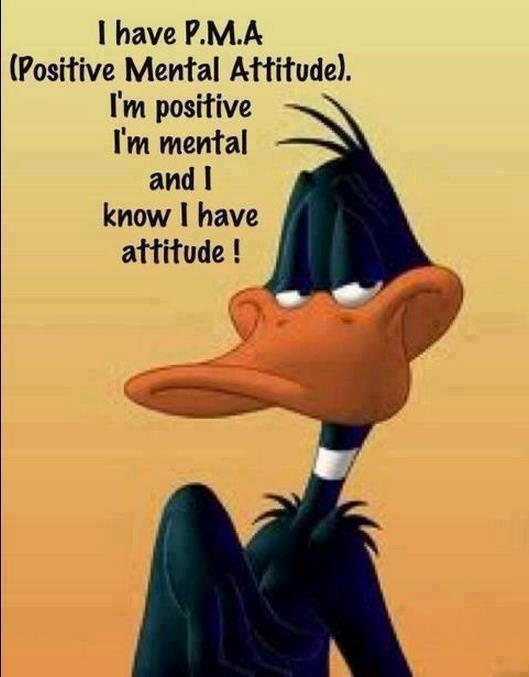 I Have P M A Positive Mental Attitude Im Positive Im Mental And I Know I Have Attitude