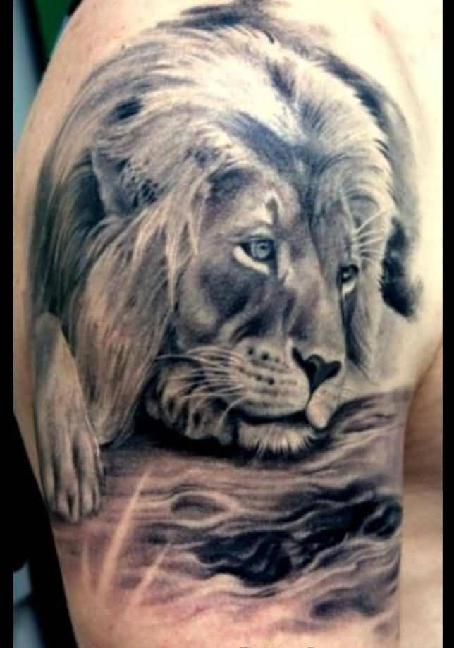 Impressive Alone African Lion Tattoo For Man In Man Shoulder