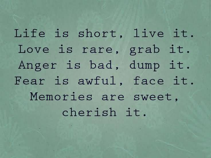Life Is Short Live It Love Is Rare Grab It Anger Is Bad Dump It Fear Is Awful Face It Memories Are Sweet Cherish It