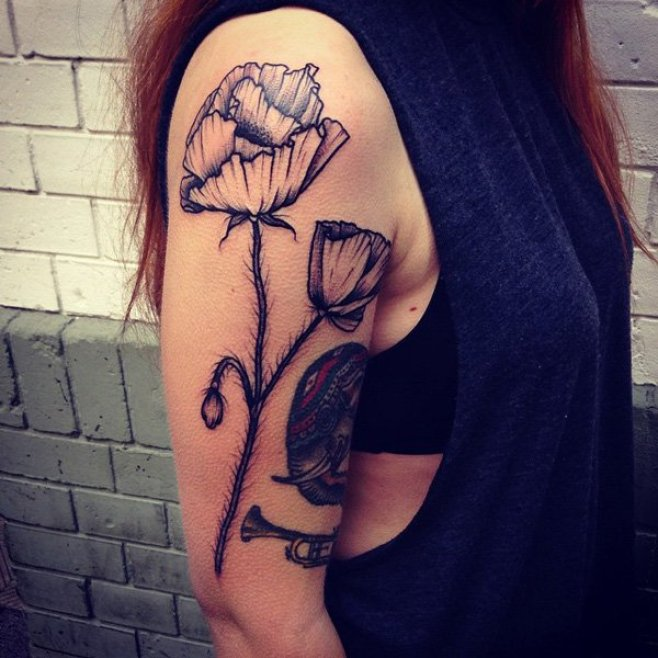 most unique Poppies tattoo on arm With Black ink For Man And Woman