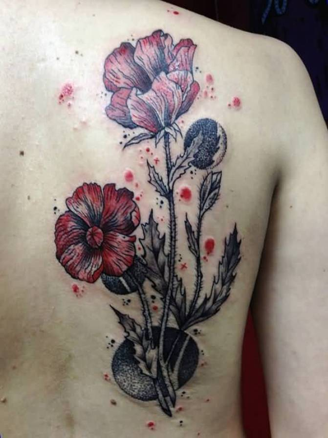 most wonderful Poppies tattoo on back With colourful ink For Man And Woman