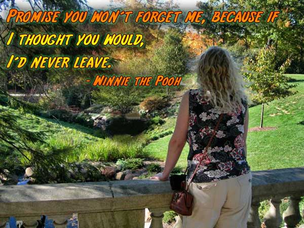 promise you won't forget me, because if i thought you would i'd never leave. winnie the pooh