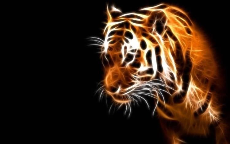 Stunning Graphic Tiger Fantastic Design Full Hd Wallpaper