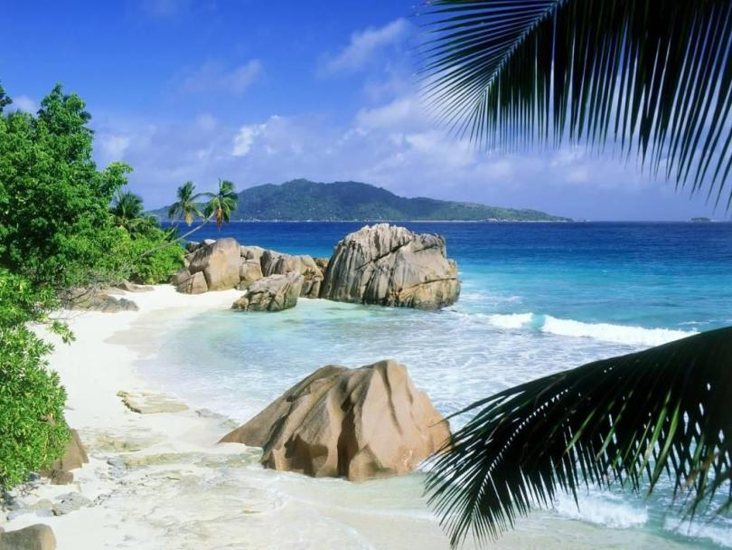 Amazing Anise Patate La Digue Seychelles 4K Wallpaper