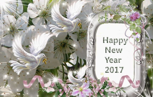 Amazing Happy New Year 2017