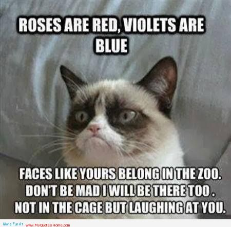 Animal Quotes Roses are red, violets are blue faces like yours belong in the zoo