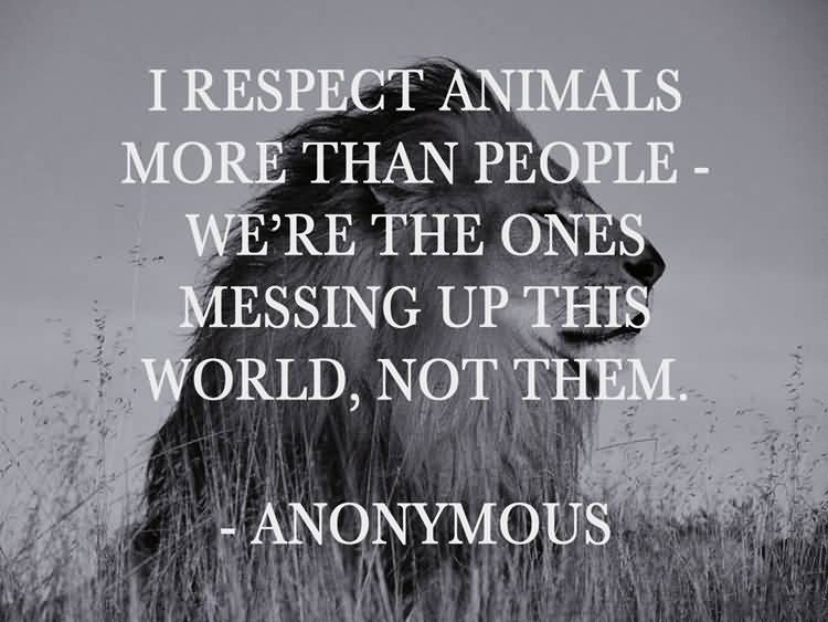 Animal Quotes034