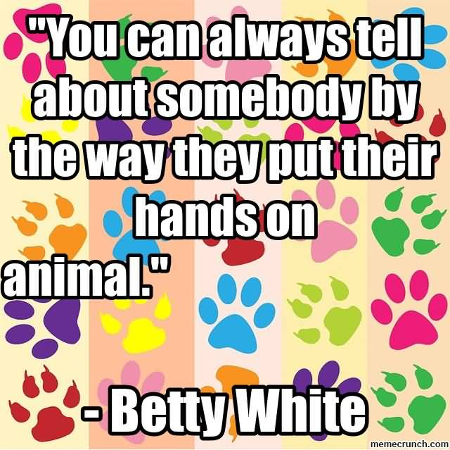 Animal Quotes016