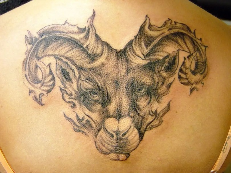 Awesome Black Color Ink Big Aries Head Tattoo On Back For Girls