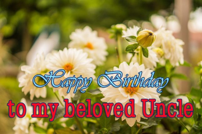 Beautiful Birthday Greetings For Lovely Uncle Wishes Image