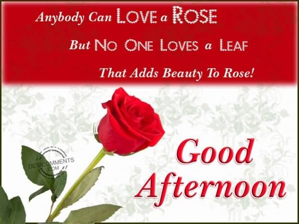 Beautiful Good Afternoon Message Image