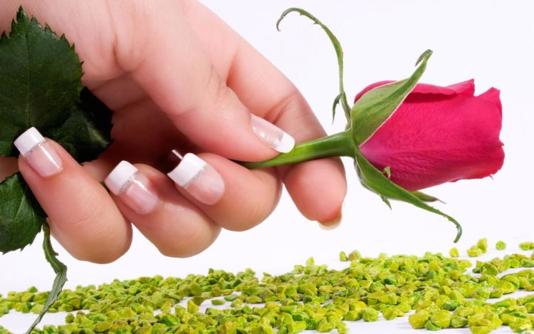 Beautiful Rose Day Wishes For Girl